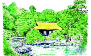 Appreciating Japanese Gardens