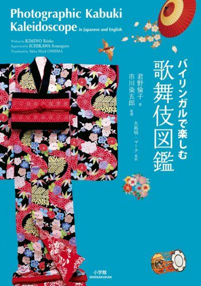Photographic Kabuki Kaleidoscope