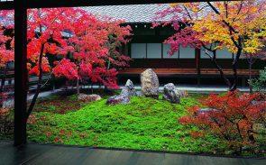 京都の建仁寺、鎌倉の建長寺を巡る