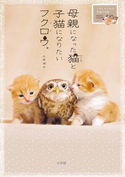母親になった猫と子猫になりたいフクロウ。